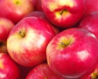 красный цвет предпосылки яблок Стоковое Изображение RF