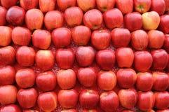 красный цвет предпосылки яблок Стоковые Фотографии RF
