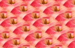 красный цвет предпосылки яблок Стоковые Изображения
