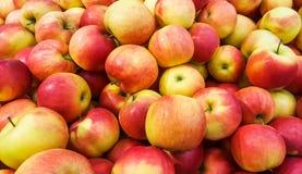 красный цвет предпосылки яблок свежий Стоковые Фотографии RF