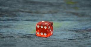 красный цвет плашек Стоковые Изображения RF