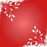 красный цвет рамки Стоковое Изображение