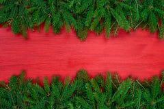 красный цвет рождества предпосылки Ель рождества на красной деревянной предпосылке Стоковое фото RF