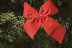 красный цвет рождества 2 смычков Стоковое Фото