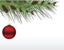 красный цвет рождества ветви bauble Стоковое фото RF
