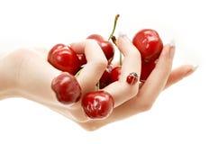 красный цвет руки вишен полный Стоковые Фото