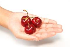 красный цвет руки вишен полный Стоковая Фотография RF