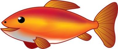 красный цвет рыб Стоковые Фото
