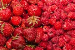 красный цвет свежих фруктов Стоковая Фотография RF