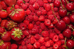 красный цвет свежих фруктов Стоковые Фото