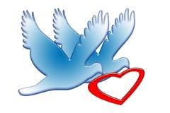 красный цвет сердца голубей Стоковое фото RF