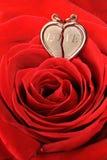 красный цвет сердца золота поднял Стоковые Фотографии RF