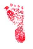 красный цвет следа ноги Стоковая Фотография