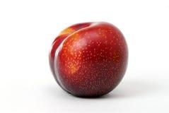 красный цвет сливы Стоковая Фотография RF