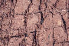 Красный цвет сломал каменную поверхностную предпосылку стоковое фото rf