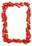 красный цвет смородины граници Стоковая Фотография
