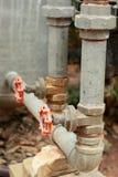 Красный цвет старые 2 клапана воды головной Стоковое Фото
