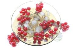 красный цвет стеклянной пластинки смородины Стоковые Изображения