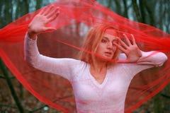 красный цвет страсти Стоковая Фотография RF