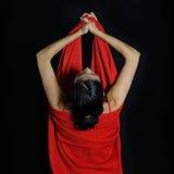 красный цвет страсти Стоковая Фотография