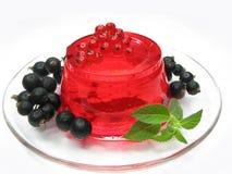 красный цвет студня плодоовощ десерта смородины Стоковые Фото