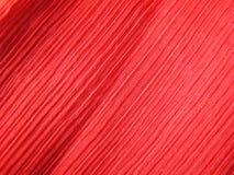 красный цвет ткани crepe Стоковые Фотографии RF