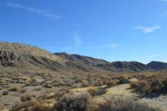 Красный цвет трясет траву Калифорнию желтого золота каньона Стоковая Фотография RF