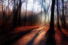 красный цвет тумана Стоковое Изображение