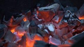 красный цвет углей горячий сток-видео