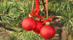 красный цвет украшения cristmas шариков Стоковое фото RF