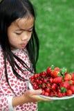 красный цвет цвета стоковые фото