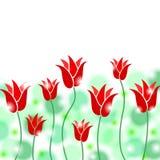 Красный цвет цветет предпосылка иллюстрация вектора