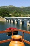 Красный цвет цветет @Geres, Португалия Стоковое Фото