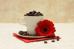 красный цвет цветка кофейной чашки Стоковое Изображение RF