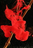 красный цвет чернил падения Стоковая Фотография RF