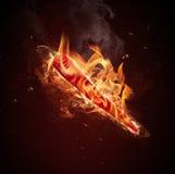 красный цвет чилей Стоковая Фотография