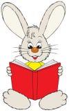 красный цвет чтения зайчика книги Иллюстрация штока
