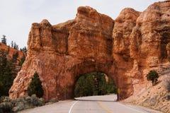 красный цвет Юта каньона Стоковое Изображение