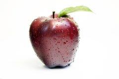 красный цвет яблока Стоковое Изображение RF