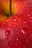 красный цвет яблока Стоковая Фотография RF