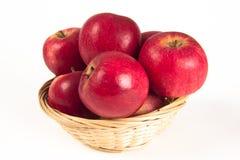 красный цвет яблока Стоковые Фотографии RF
