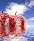 красный цвет яблока Стоковое Изображение
