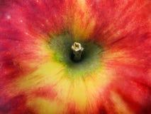 красный цвет яблока Стоковые Изображения RF