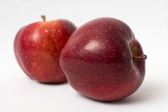 красный цвет 2 яблок стоковые изображения rf
