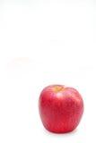 Красный цвет яблока на белом стиле предпосылки Стоковое фото RF