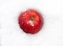 Красный цвет Яблока на снеге Стоковые Изображения RF
