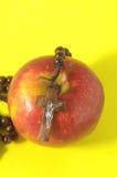 Красный цвет Яблоко греха Ева библии Стоковые Изображения