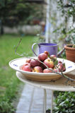 красный цвет яблок органический Стоковые Фото
