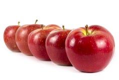 красный цвет яблок сочный Стоковое Изображение