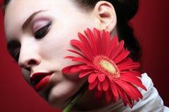 красный цвет 2 цветков Стоковое фото RF